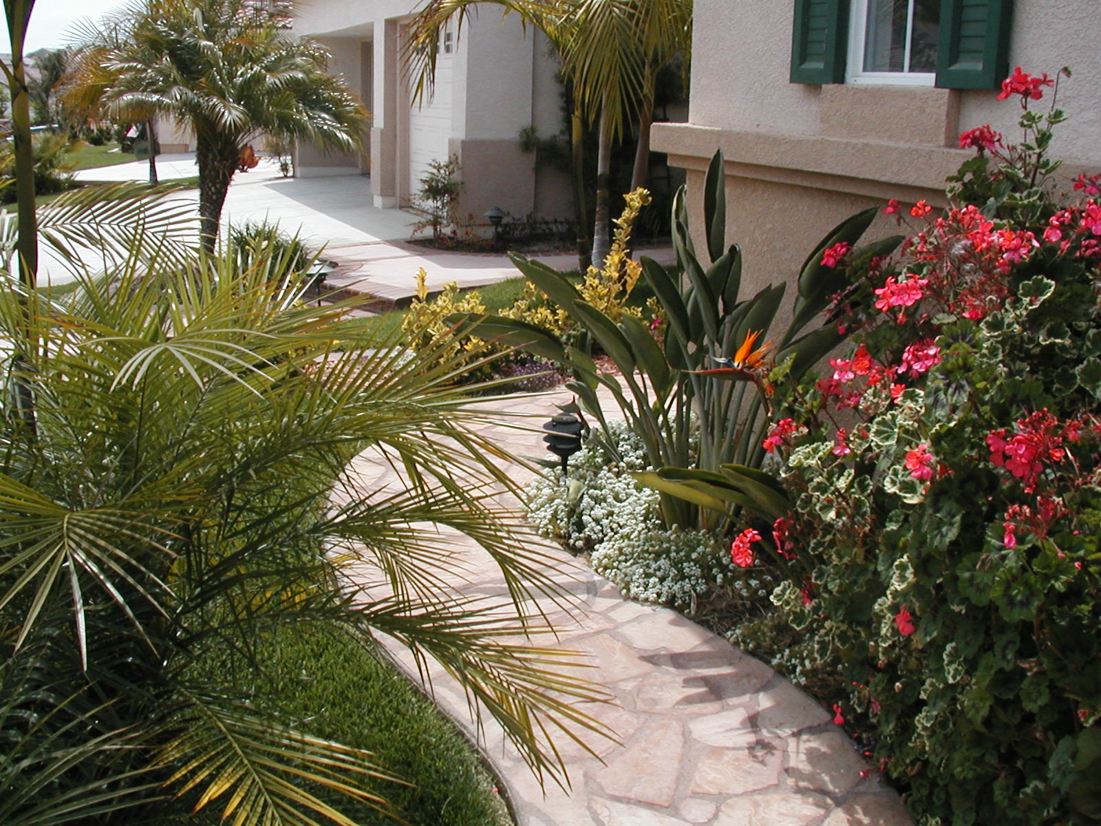 Sun Valley Landscape Inc - San Diego, California (CA) | Home